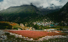 Rackham Village Surronded By Himalayan Peaks And Red Olga Crop In Himachal Pradesh, India.