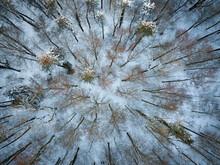 Göttinger Wald Von Oben