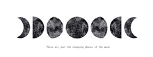 Abstract Watercolor Illustration Of Changing Phases Of The Moon, Superimposed Watercolor And Ink Texture With Floral Elements And Splashes. For Posters, Prints And Other Decorations.