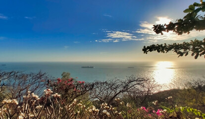View of the sea and coastline and ships in Vung Tau. Trees and Slopes. Vietnam. South-East Asia