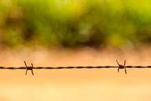 Close-up Of Barbed Wire Fence Outdoors