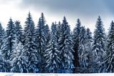 Góry Beskidu zimową porą