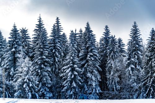 Fototapeta Góry Beskidu zimową porą obraz