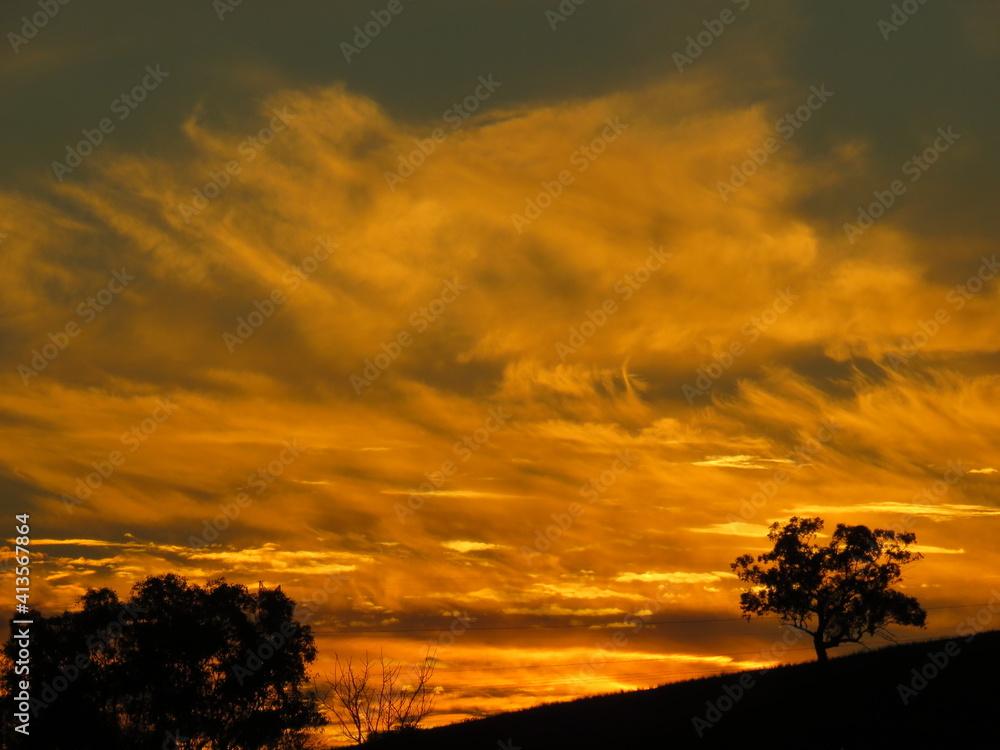 Fototapeta Silhouette Trees On Field Against Dramatic Sky During Sunset