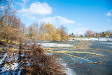 Frozen Snow Fish Pond With Fallen Alder Trees, Tree Trunks Broken Down. Shore Covered With Ice Crystals, Water Surface. Horizon, Blue Sky Winter Background. Germany, Alzey, Rhineland Palatinate