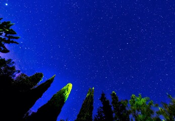 Fototapeta na wymiar Low Angle View Of Star Field Against Blue Sky