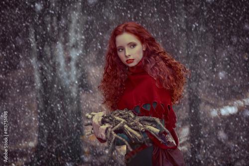 Fotografie, Obraz heroine of fantasy tale