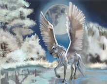 Beautiful Pegasus In The Winter Night Forest On The River