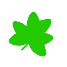 Clover, Green, Shamrock, Leaf, Irish, Luck, Symbol, Patrick, Illustration, Star, Four, Isolated, 3d, Holiday, Ireland, Day, St, Saint, Lucky, White, Plant, Icon, Flower, Graphic, Design