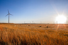 Colorado Wind Farm Located On A Wheat Field During Sunrise