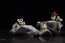 Grey Marble Stone Podium With White Tiny Flowers, Water As Shore At Night For Packaging And Cosmetic Presentation On Black Background. Natural And Asia Style.