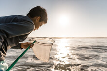 Tween Boy Looking In Net At A Beach On A Sunny Summer Morning