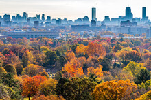 Fall Foliage Colors Popping In Front Of City Skyline.