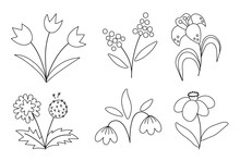 Vector Cute Black And White Spring Flowers Icons Set. First Blooming Plants Outline Illustration. Floral Clip Art Collection Or Coloring Page. Tulips, Dandelion, Snowdrop