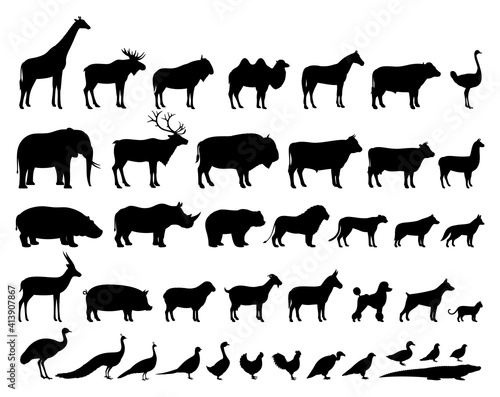Vector domestic and wild animals silhouettes collection Fototapet