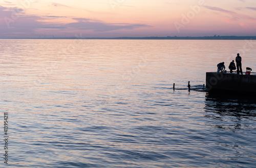 Fotografie, Obraz Ships on horizon stand in roadstead
