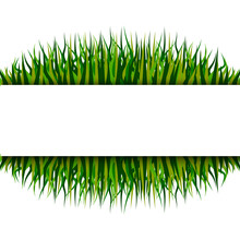 Pattern With Grass Frame. Vector Illustration Design. Nature Background Vector. Stock Image. EPS 10.