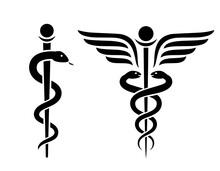 Snake Medical Icon, Caduceus Vector Sign