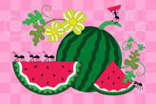 Picnic Vector Illustration. Cute Ants, Watermelon, Leaves And Flowers On A Pink Checkered Background.  Cartoon Style.