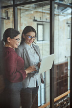 Two Females Working Together At Business Project