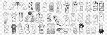 Animal Paws With Claws Doodle Set. Collection Of Hand Drawn Paws Of Cats And Dogs Of Various Shape With Claws Trying To Catch Mouse And Playing Isolated On Transparent Background In Rows