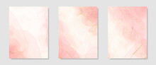 Collection Of Abstract Pink Liquid Watercolor Background With Golden Crackers. Pastel Marble Alcohol Ink Drawing Effect. Vector Illustration Design Template For Wedding Invitation