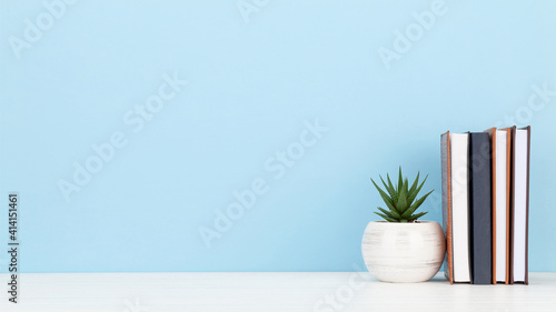 Obraz Office desk with potted plant and notepads. Work from home - fototapety do salonu