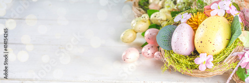 Fototapeta Happy easter background with Nests decoration, colorful eggs and Spring Flowers. Caster card on sunny spring background obraz