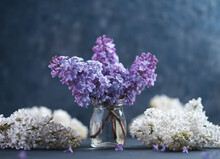 A Bouquet Of Blooming Lilacs In A Small Glass Vase