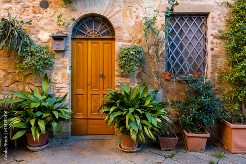 Fototapeta premium landscape with door and plants in pot