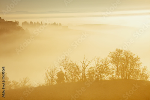 Fototapeta premium landscape with hills, fog and trees