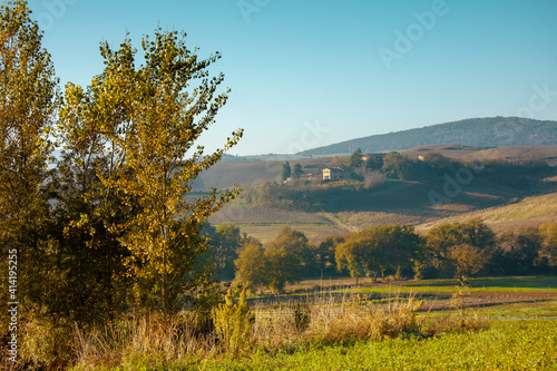 Fototapeta premium landscape with hills and trees in Tuscany, Italy in summer
