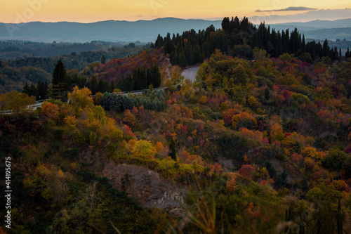 Fototapeta premium landscape with hills and forest