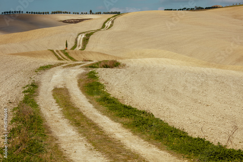 Fototapeta premium landscape with road in Tuscany, Italy in autumn