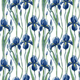 Seamless patterns with blue irises and green leaves in the style of Van Gogh - 414202672