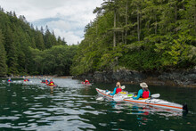 Canada, British Columbia. Sea Kayakers Paddle Along The Shore Of Hansen Island In Johnstone Strait.