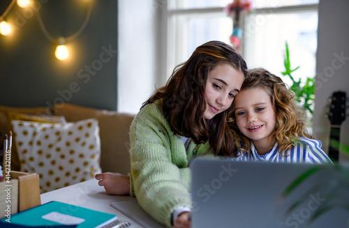 Fototapeta Sisters schoolgirls with laptop learning online indoors at home, coronavirus concept. obraz
