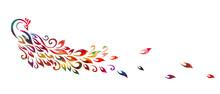 Graphic Multicolored Peacock. Vector Illustration