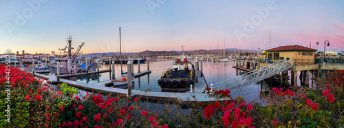 A panorama of a calm harbor of ships under a pink sunset with red and pink bougainvillea plants in the foreground Fototapet