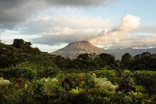Dramatic Photo Of Arenal Volcano With Tropical Vegetation In Front During Sunset. Costa Rica.