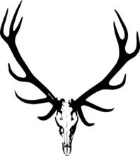 Elk Skull Animal Icon Symbol