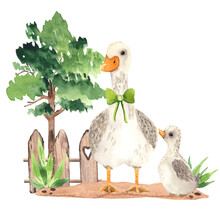 Watercolor Farm Village Composition With A Cute Goose And Little Baby Gosling