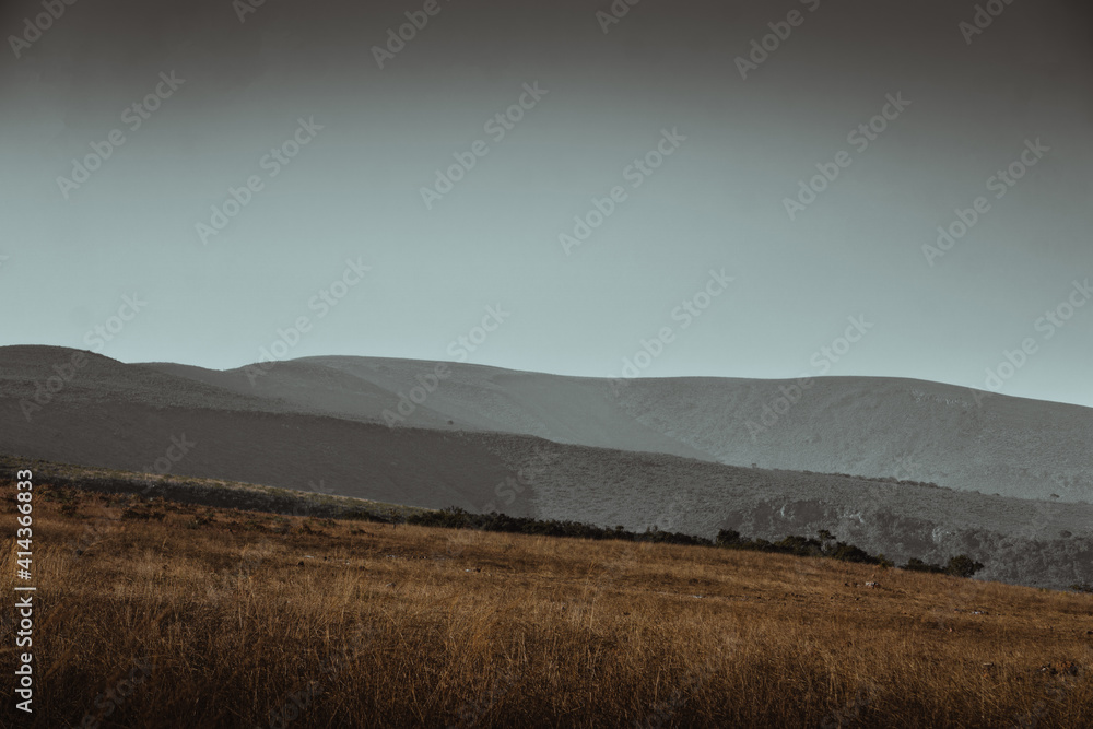 Fototapeta Beautiful landscape of a golden grass field in the mountains