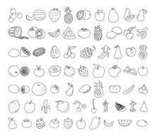 Fruit Element Doodle Set. Fruit Vector Doodle Illustration. Vegetarian Healthy Food, Sketch Of Food For Menu Illustration