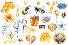 Honey Set, Bee And Wasp, Honeycomb, Field Herbs, Flowers, Jar, Packaging For The Product. Hand Drawn Watercolor Illustration Isolated On White Background.