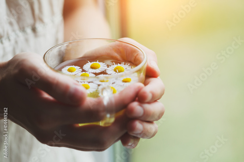 female hands holding cup of herbal tea with chamomile flowers © zakalinka