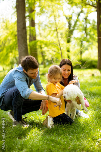 Beautiful happy family is having fun with bichon dog outdoors Fototapeta