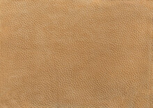 Camel Leather Texture Background Surface