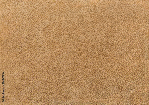 Canvas-taulu camel leather texture background surface