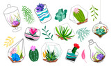 Set of geometric florariums. Geometric terrariums set with plants, succulents and cactus. Scandinavian style home decor. Glass crystal florariums isolated on white background.